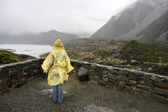 Rainy New Zealand Royalty Free Stock Photos
