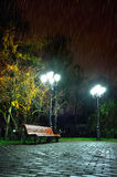 The rainy night in the autumn park Stock Photography