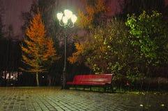 The rainy night in the autumn park Royalty Free Stock Photo