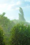 Rainy outside window green background texture. Stock Photo