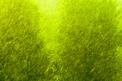 Rainy outside window green background texture. Stock Image