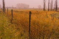 Rainy Prairie in Autumn stock photography