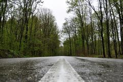 Rainy Road in Valeni. Picture taken of a road that passed through a forest, after a rain, in Valenii de Munte village, Prahova County, Romania Stock Photos