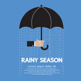 Rainy Season Stock Images