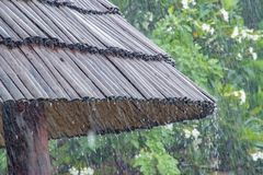 Rain drops from the bamboo roof. vector illustration