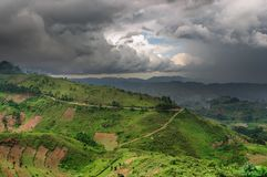 Rainy season in Uganda Royalty Free Stock Photo