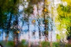 Rainy spring day. Seen through window Stock Image