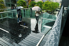Rainy street Royalty Free Stock Photo