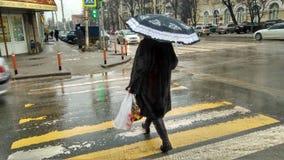 Rainy street Royalty Free Stock Photography