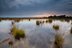 Rainy sunset over swamps Royalty Free Stock Images