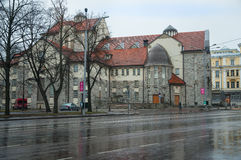 Rainy Tallinn. Royalty Free Stock Photos