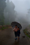 Rainy walk royalty free stock image