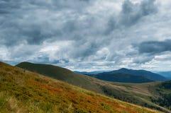 Rainy weather in Carpathians Royalty Free Stock Image