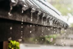 Rainyday imagem de stock royalty free