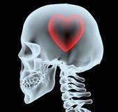 Raio X de uma cabeça com o coração em vez do cérebro