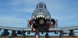 A-10 raio II/Warthog Imagens de Stock
