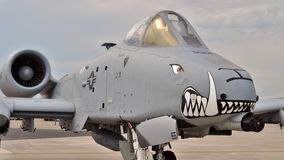 A-10 raio II/Warthog Imagens de Stock Royalty Free