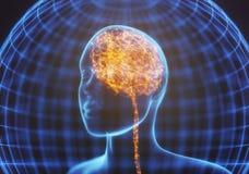 Raio X poderoso do cérebro da mente Imagens de Stock