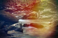 Raios coloridos brilhantes da luz solar sobre um córrego do rio na floresta profunda da montanha fotografia de stock royalty free