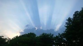 Raios de sol da noite Imagem de Stock Royalty Free