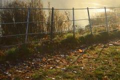 Raios de sol dourados que brilham para baixo no dia do outono de A no hampstead Londres imagens de stock
