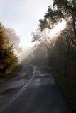 Raios de sol nevoentos em uma estrada secundária Foto de Stock