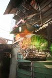 Raios de sol que brilham através de uma gaiola de madeira no por do sol, alargamento fantástico da casa e de pássaro da lente Est fotos de stock royalty free