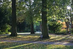 Raios de Sun na paisagem do outono Imagens de Stock Royalty Free