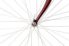 Raios de uma roda de bicicleta dianteira Imagens de Stock Royalty Free