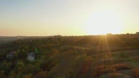 Raios do sol no por do sol sobre as árvores video estoque