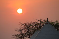 Raios dourados do sol durante o nascer do sol imagem de stock royalty free