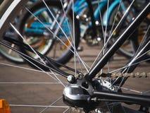 Rais de bicyclette Photographie stock libre de droits