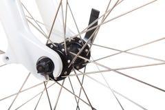 Rais sur la roue de bicyclette d'isolement Image libre de droits