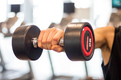 Raise dumbbells Royalty Free Stock Photos