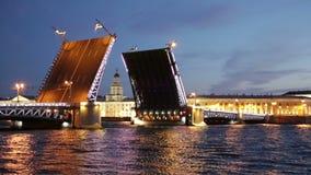 Raise Palace Bridge across river Neva and Kunstkamera stock footage