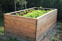 Raised bed in a garden Royalty Free Stock Photography