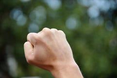 Raised Fist. Fist raised to the sky Stock Photo
