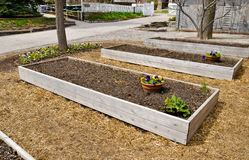 Raised Flower Beds Stock Images