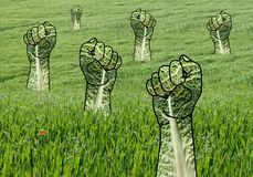 Raised Green Fists in Grass Field Stock Photography