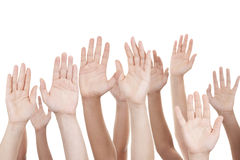 Raised hands. Isolated on white background stock image