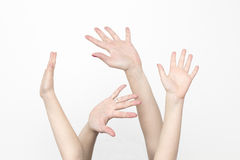 Raised hands,  on white Royalty Free Stock Photo