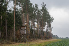 Raised hide in fall. A raised hide in the forest in autumn Royalty Free Stock Photo