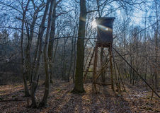 Raised hide for hunting in a forest. Impressive picture of a raised hide for hunters with sunlight and shadows Royalty Free Stock Photography