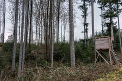 Raised hide in the middle of the forest. Little raised hide in the middle of the forest Stock Images