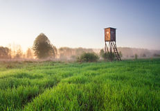 Raised hide on morning foggy meadow. landscape Royalty Free Stock Images