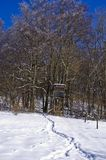 Raised Hide In Winter Forest Royalty Free Stock Photos