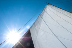 Raised mainsail with bright sunshine Stock Image