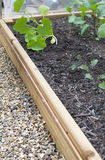 Raised vegetable bed Stock Image