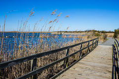 Raised Walkway through Marsh at Back Bay National Wildlife Refuge. In Virginia Beach, Virginia Stock Photos