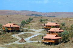 Raised Wooden Cabins. Image of Wooden cabins on stilts, accommodation in a game reserve in South Africa Royalty Free Stock Image
